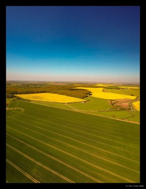 Lincolnshire Fields