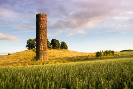 Camo water tower